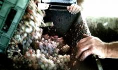 Goods&More _wine